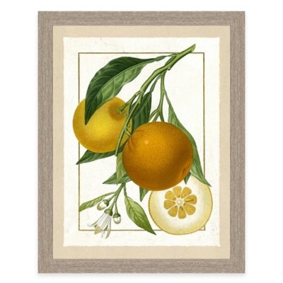 Framed Giclée Orange Grouping I Print Wall Art