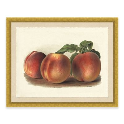 Rustic Peach Framed Art Print