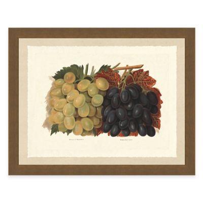 Rustic Grape Framed Art Print