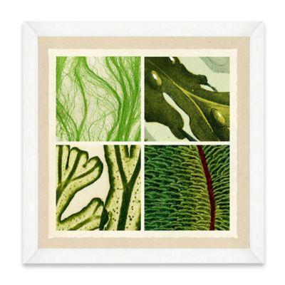 Sea Life Pattern I Framed Art Print