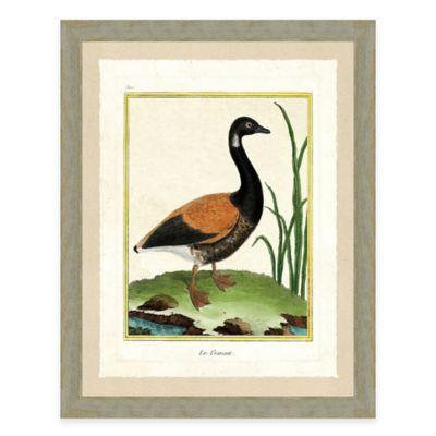 Goose II Framed Art Print