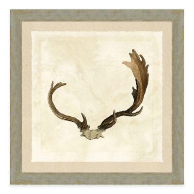 Antler Framed III Art Print