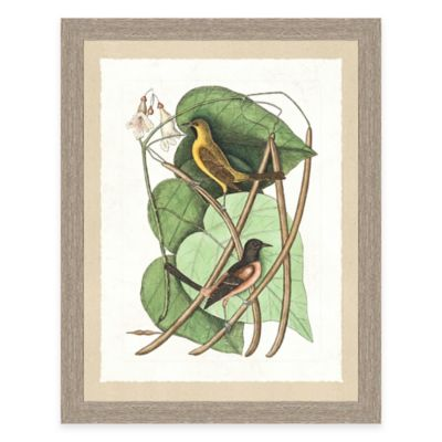 Yellow Bird Framed Art Print