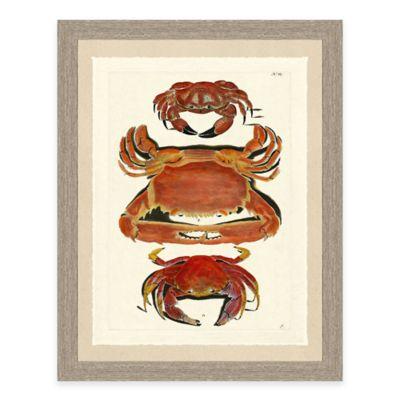 Framed Giclée Red Crabs Print I Wall Art