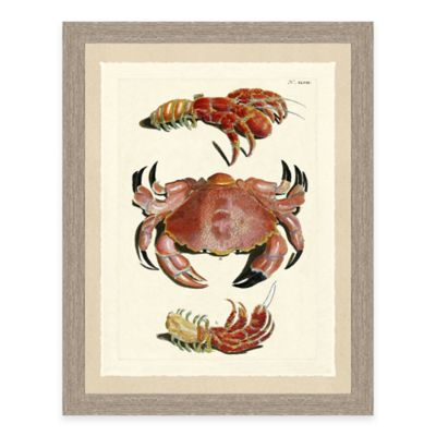 Framed Giclée Red Crabs Print II Wall Art