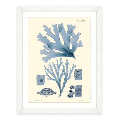 Framed Giclée Blue Seaweed Print I Wall Art