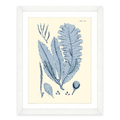 Framed Giclée Blue Seaweed Print II Wall Art