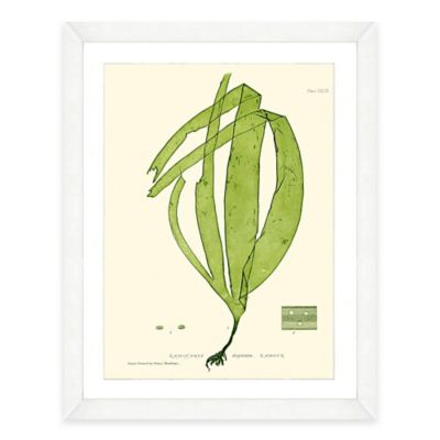 Framed Giclée Green Seaweed Print II Wall Art