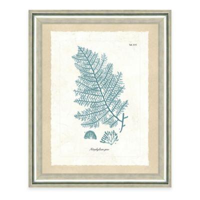 Framed Giclee Teal Seaweed Print III Wall Art