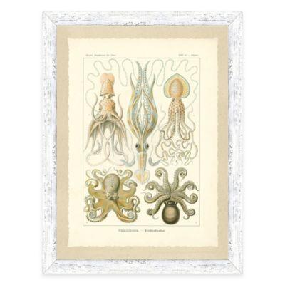 Framed Giclée Octopi and Jellyfish Print Wall Art