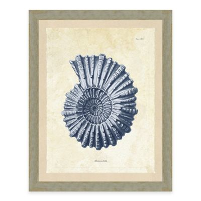 Framed Giclée Blue Nautilus Print Wall Art
