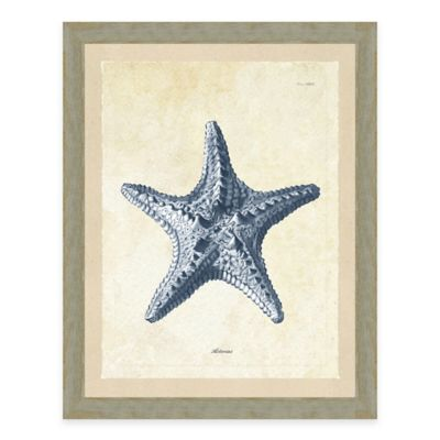 Framed Giclee Blue Starfish Print Wall Art
