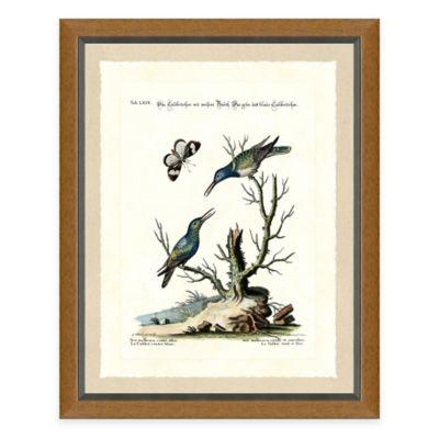 Bird Scene III Framed Art Print