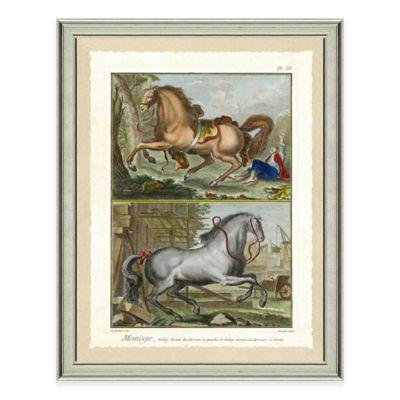 Double Horse Scene I Framed Wall Art Print