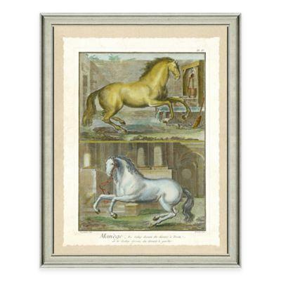 Double Horse Scene II Framed Wall Art Print