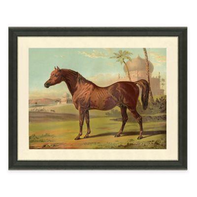 Horse Scene I Framed Art Print