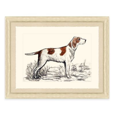 Hunting Dog III Framed Art Print