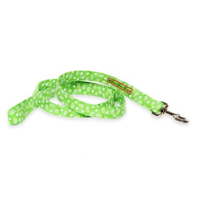 Donna Devlin Designs® 60-Inch Small Daisy Do Dog Leash in Green/White