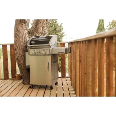 Stainless Steel Black Propane Grill