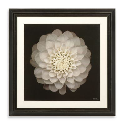 Dahila 22 Framed Photographic Wall Art