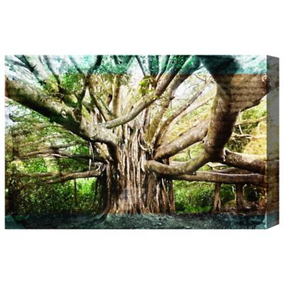 Oliver Gal The Tree of Life Canvas Wall Art
