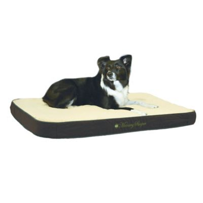 Memory Sleeper Small Pet Bed in Sage