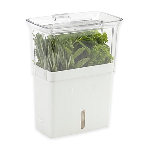 Cole mason fresh herb keeper for Decor containers coles