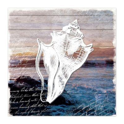 Conch Shell 16-Inch x 16-Inch Canvas Wall Art