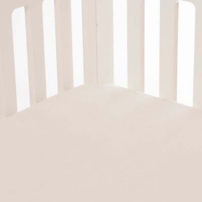 Glenna Jean Fish Tales Softee Fitted Crib Sheet in Cream