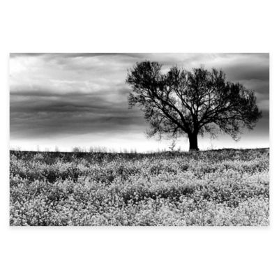 Tree in a Field Tennessee Canvas Wall Art