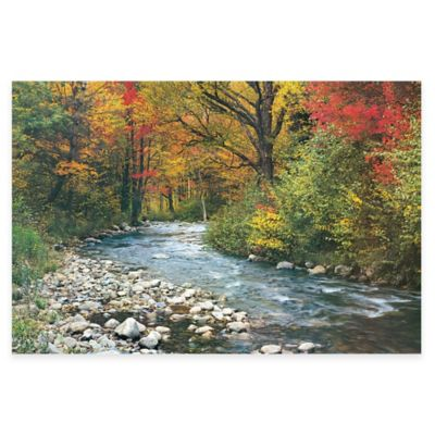 Forest Creek Photographic Canvas Wall Art