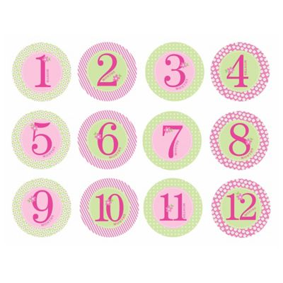 Pearhead Baby Girl First Year Belly Stickers