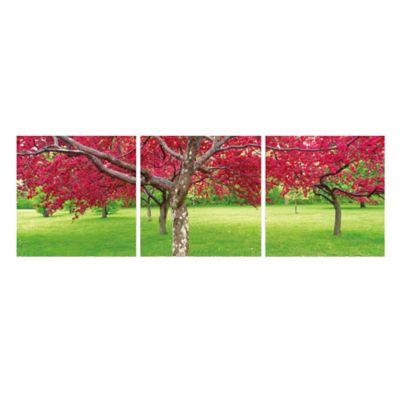 Elementem Photography Cherry Blossoms 3-Panel Photographic Triptych Wall Art