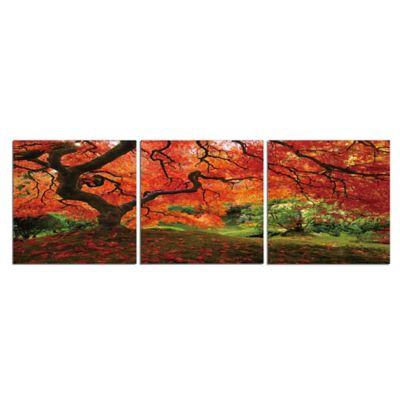 Maple Wall Decorations
