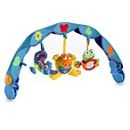 Musical Take-Along Car Seat Hippo Arch by Tiny Love ®