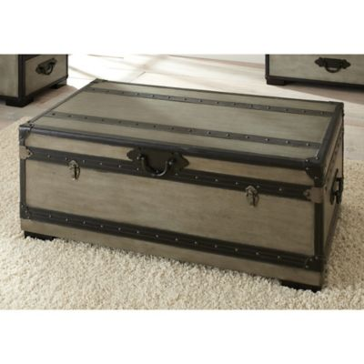 Steve Silver Co. Rowan Trunk in Grey