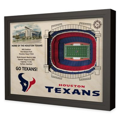 NFL Houston Texans Stadium Views Wall Art