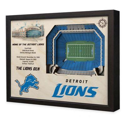 NFL Detroit Lions Stadium Views Wall Art