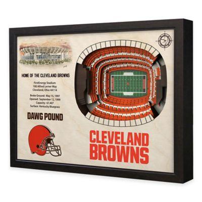 NFL Cleveland Browns Stadium Views Wall Art