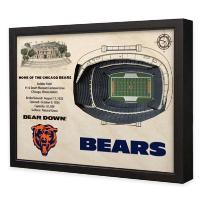 NFL Chicago Bears Stadium Views Wall Art