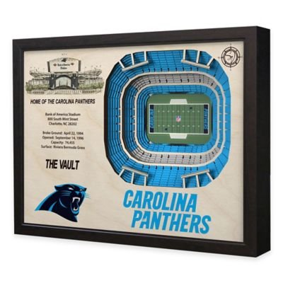 NFL Carolina Panthers Stadium Views Wall Art
