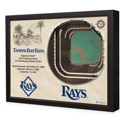 MLB Tampa Bay Rays Stadium Views Wall Art