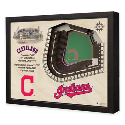 MLB Cleveland Indians Stadium Views Wall Art