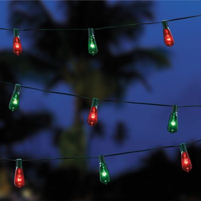 Edison Indoor/Outdoor 10-Bulb String Lights in Brown