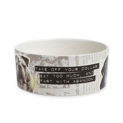 From Frank Friends Large Pet Bowl in White/Grey