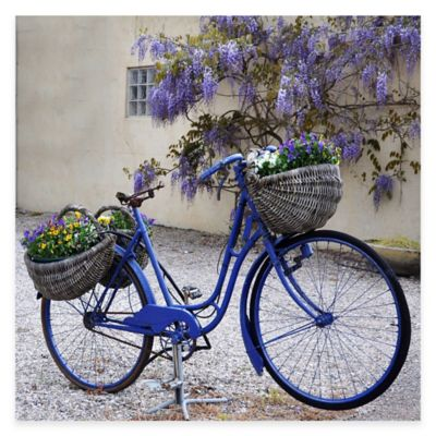 Blue Bike All Weather Outdoor Canvas Wall Art
