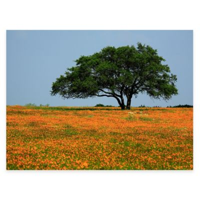 Majestic Oak All Weather Outdoor Canvas Wall Art