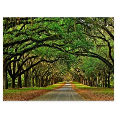 Avenue Oak All Weather Outdoor Canvas Wall Art