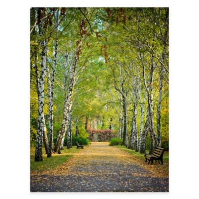 Birch Trail All Weather Outdoor Canvas Wall Art