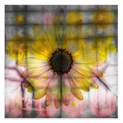 Parvez Taj Pink And Yellow Sunflower 18-Inch x 18-Inch Canvas Wall Art
